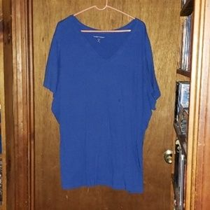 Woman Within Blue V-Neck Shirt Top